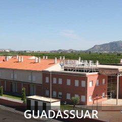 Guadassuar