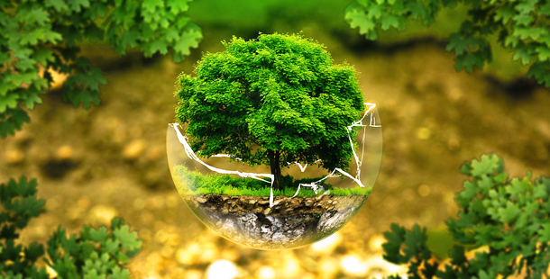conservacion-naturaleza